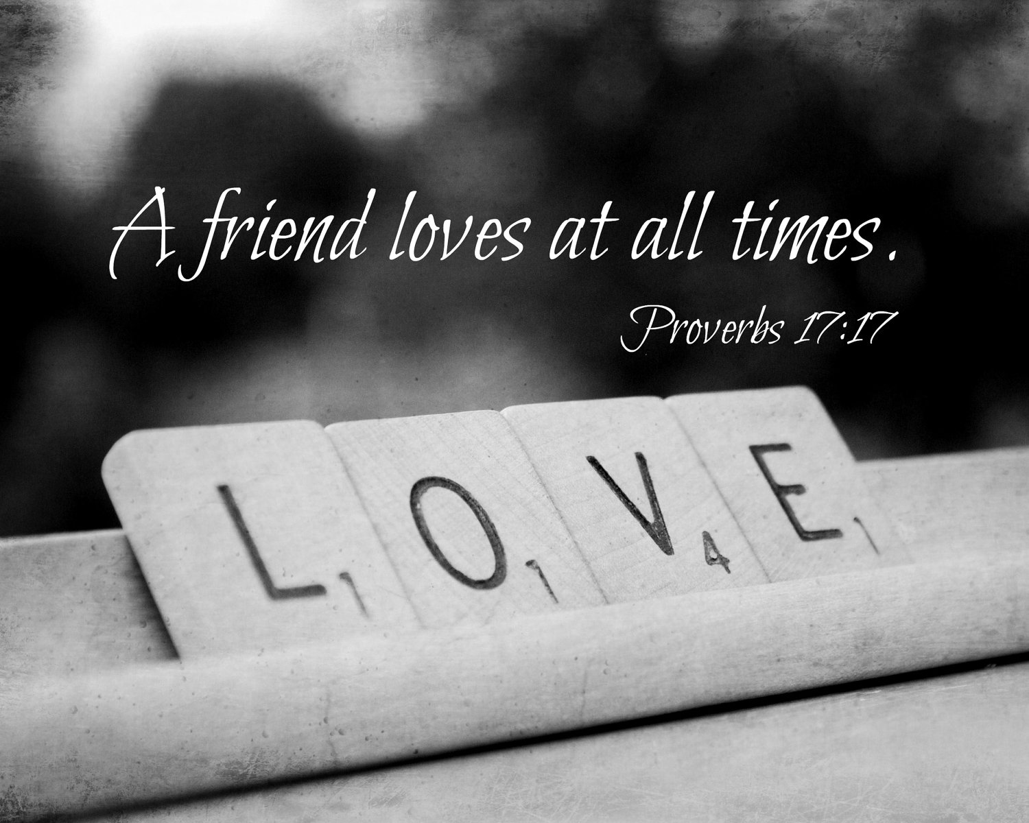 Quotes About True Love And Friendship True Friendship  The Mustard Seed