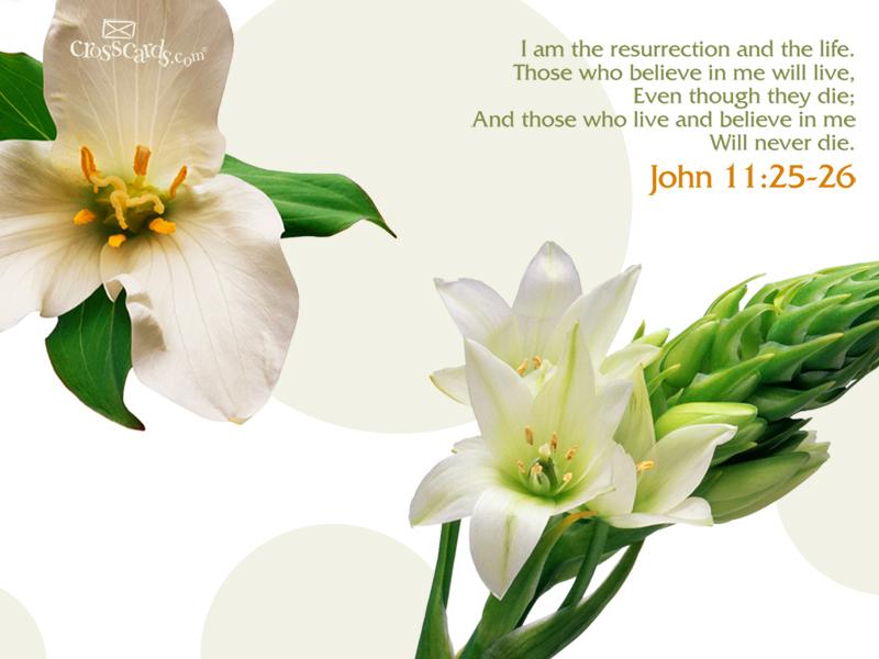 http://www.crosscards.com/wallpaper/scripture-verses/john-11-25-26.html