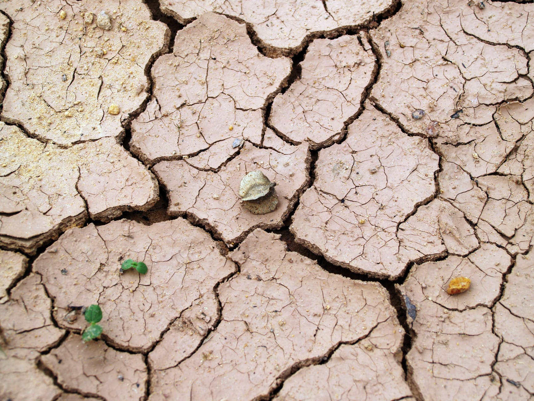 arid barren clay cracks
